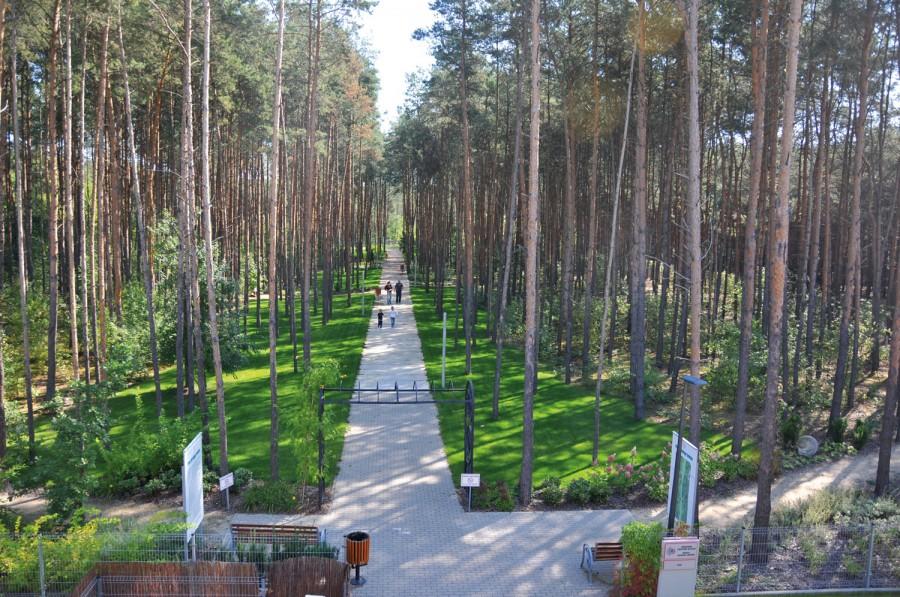 Park 10 tysięcy kroków