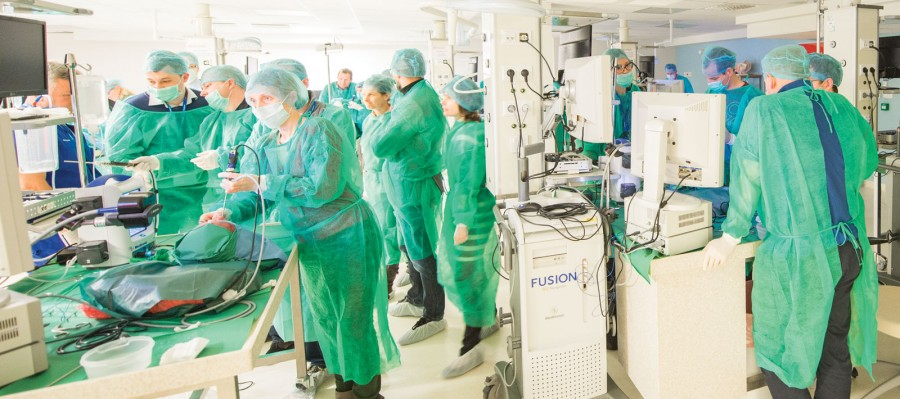 6. Międzynarodowy Kurs Chirurgii Endoskopowej Zatok. Zajęcia praktyczne w Centrum Edukacyjnym Światowego Centrum Słuchu.